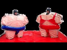 sumo-4x4 mts.