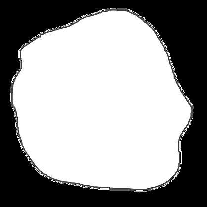 salina-web-countur-2.png