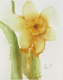 First Daffodil_edited.jpg