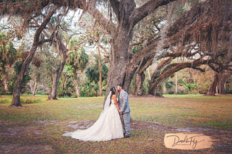 Bride & Groom Under Beautiful Tree at Southern Waters, North Fort Myers Florida Photo By Doodle Fly Photography www.DoodleFlyPhotos.com