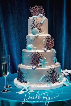 Wedding_Cake_Ella's_Cakes_Naples_DoodleFly.jpg