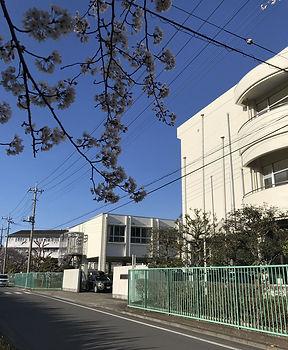 浦和特別支援学校-ててスクール 2.jpg