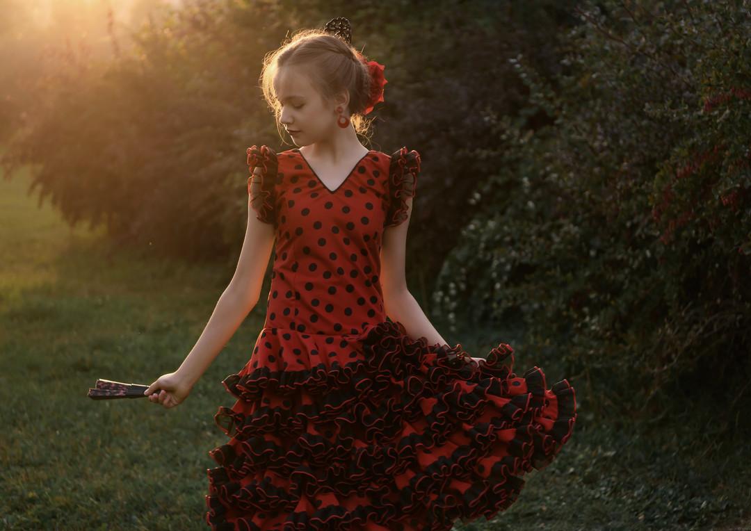 Flamenco * Фламенко