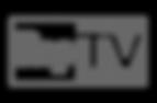 logo repubblicatv
