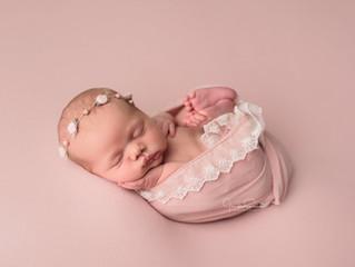 Houston Newborn Photographer   Jennifer Spencer Photography   Newborn Portraits