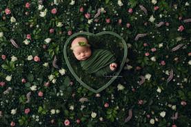 Houston Newborn Photographer (2).jpg
