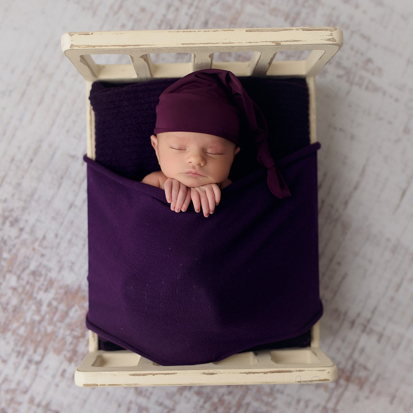 Newborn session styled with pink, plum and mint colors.