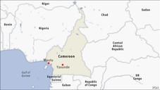 Cameroon army killed civilians in village raid, witnesses and lawyer say