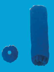 Starter Cervix follicle, with textured end