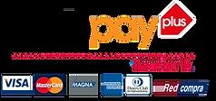 webpay-logo1_faf9fd07-8683-4715-a39b-e99
