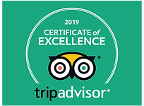 certificate of excellence 2019.png