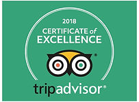 CERTIFICATE OF EXCELLENCE 2018 - Natural healing and Wellness center Paphos - Cyprus (640x480).jpg