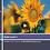 Thumbnail: Reiki 1 Online refresher course