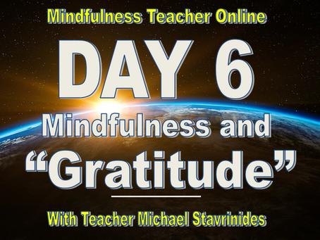 """Mindfulness & Gratitude""  With Teacher Michael Stavrinides."