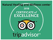 Natural healing and Wellness CERTIFICATE