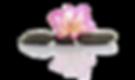 Flower on 3 stones