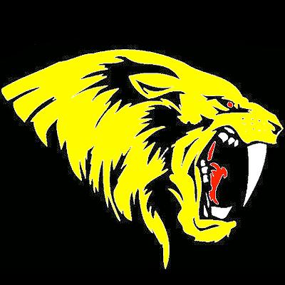 Terra Nova Tigers logo.png