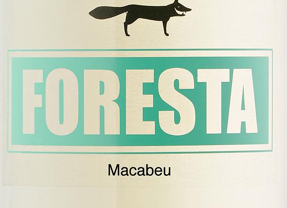 Ancestral Macabeu 2019