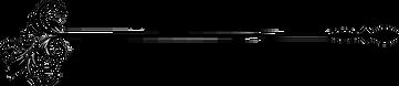 png-page-divider-98a42730e72e90f68e75535