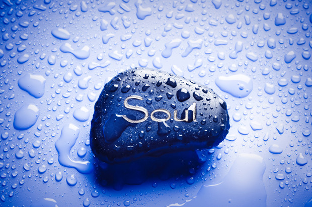 Hello beautiful Soul- What is my Path?  Why am i here? What is my passion? What is my joy? I follow the light of my soul with love... <3