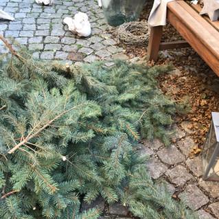 Der X-Mas-Baum wird upgecycelt