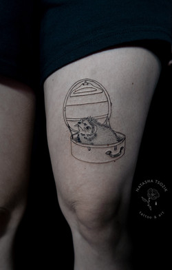 hedgehog-in-a-hatbox by natasha tsozik