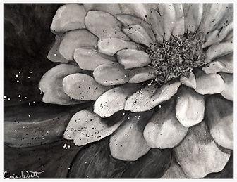 Kitchen-Flower w.jpg