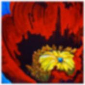 Poppy Heart w.jpg