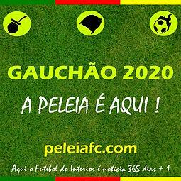 gauchao 2020-compressed.jpg