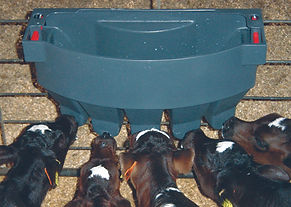 Milk Bar 5 compartment calf feeder