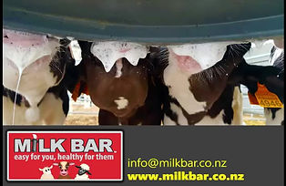 The Milk Bar 1 4L with Teat Attachment has loads of great features!