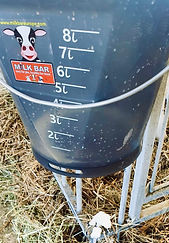 Milk Bar Euroe bucket calf feeder