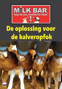 1 Cover NL.jpg