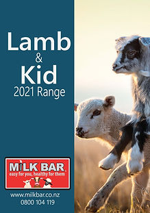 Lamb & Kid 1.jpg