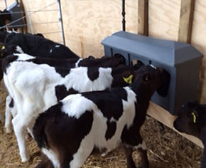 Milk Bar Tri Waterer