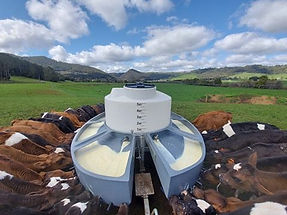 Milk Bar mobile calf feeder