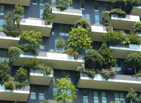 Beyond Green: From Sustainability To Regenerative Housing