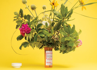 The Nature Cure:                                      Why some doctors are writing prescriptions for
