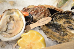 oysters_20121209_1201.JPG