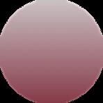 AutoWhiz Circle 2.png