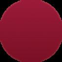 AutoWhiz Circle.png