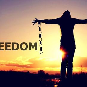 Sermon: Freedom Isn't Free (Audio)