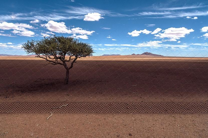 Пустыня-5.jpg