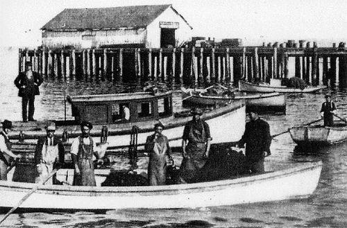 Fishers 6.jpg