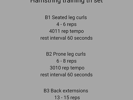 Hamstring tri set program