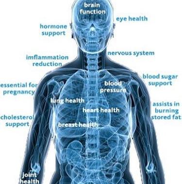 The many health beneifts of omega 3 fats