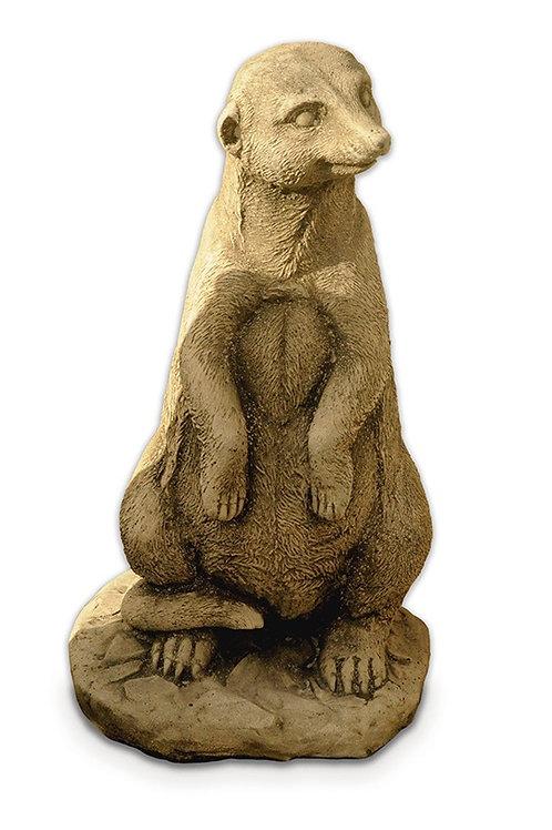 Meerkat Standing (AN19)