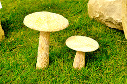 Sandstone Mushrooms
