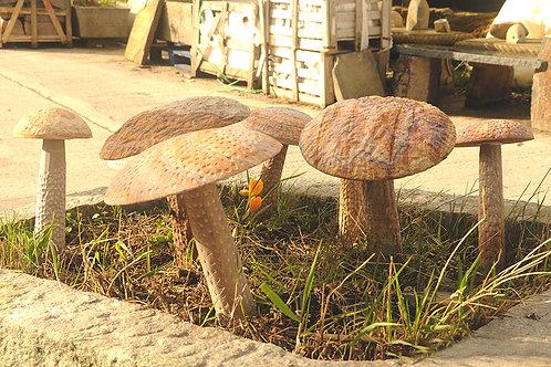 Rainbow Sandstone Mushrooms (various sizes)