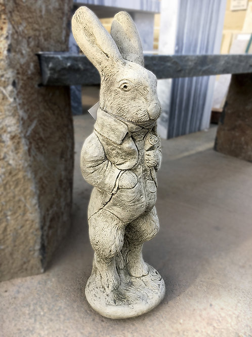 Peter Rabbit (AN22)